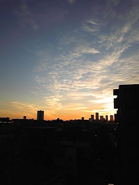2010年1月23日の朝日